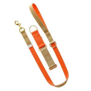 orange dog lead and collar doggie apparel