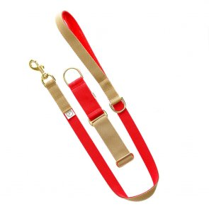 red dog lead and collar doggie apparel