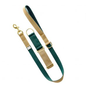 green and beige dog lead and collar doggie apparel
