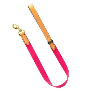 Doggie Apparel Pink Leather Dog Lead 'Dreamland'