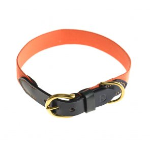 Doggie Apparel Luxury Leather Dog Collar 'Arlington'