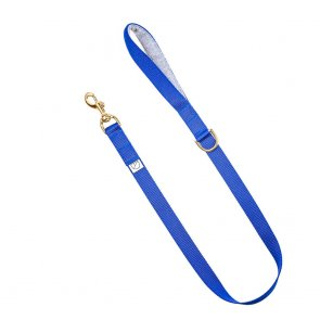 royal blue dog lead doggie apparel