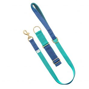 navy and green doggie apparel dog lead and collar