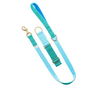 blue and green dog collar and lead doggie apparel