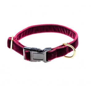 doggie apparel burgundy velvet dog collar