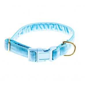 doggie apparel sky blue velvet dog collar