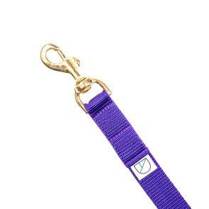 Doggie Apparel Purple Handsfree Dog Lead 'Orchard'