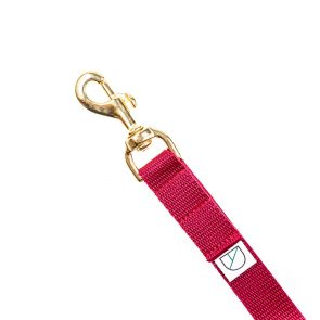 Doggie Apparel lightweight handsfree dog lead