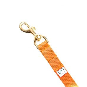 Doggie Apparel lightweight handsfree orange dog lead