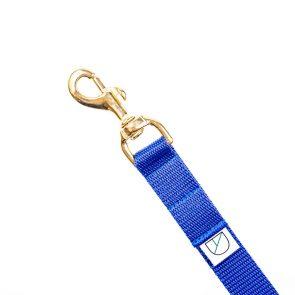 Doggie Apparel blue handsfree dog lead
