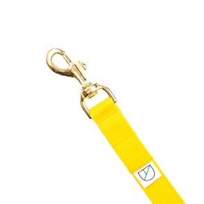 Doggie Apparel yellow lightweight handsfree dog lead