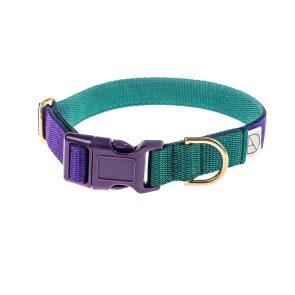 doggie apparel purple & forest dog collar