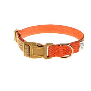 doggie apparel beige & orange dog collar