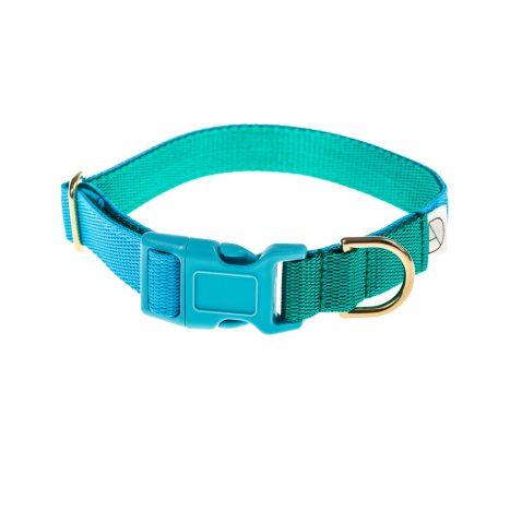 doggie apparel sky & emerald dog collar