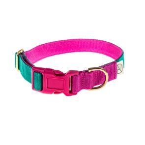 doggie apparel emerald & cerise dog collar