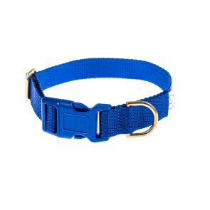 doggie apparel royal blue dog collar