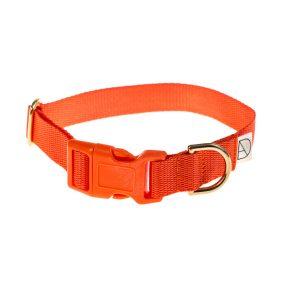 doggie apparel orange dog collar