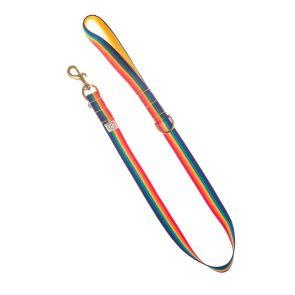 doggie apparel rainbow dog collar