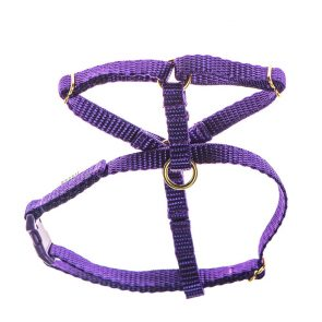 teeny single webbing dog harness