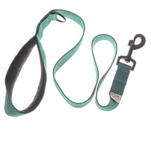 Limited Edition dog lead by doggie apparel
